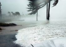 Positive and Negative Effects of Hurricanes