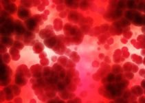 Positives and negatives of plasma donation